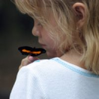 הילדים מחפשים משמעות